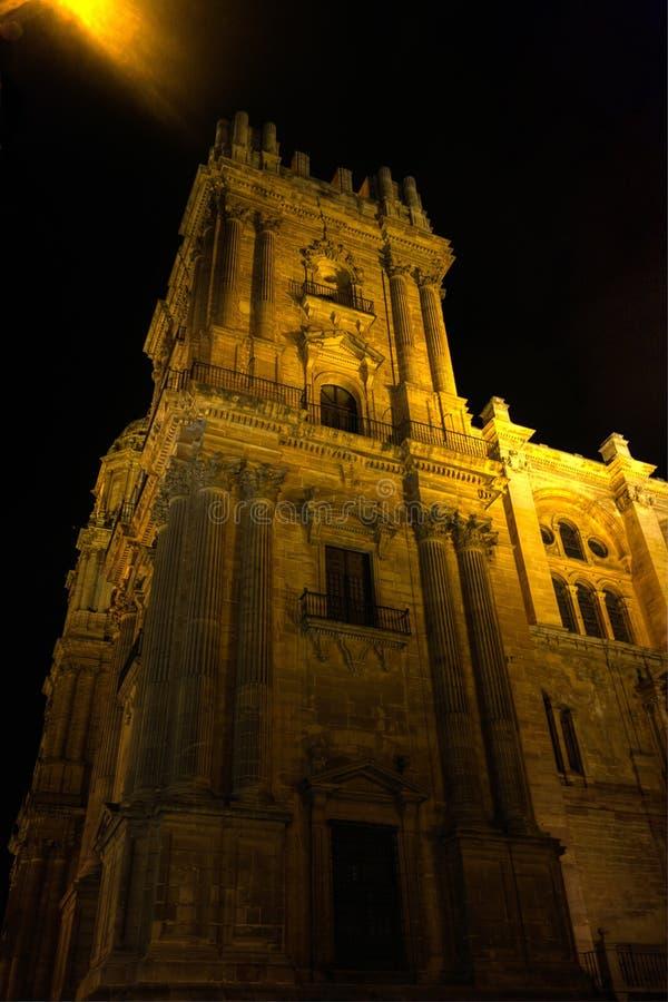 Η άποψη νύχτας του καθεδρικού ναού της Μάλαγας στοκ εικόνες