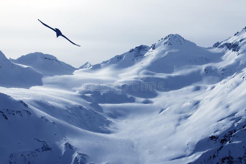 Η άποψη σχετικά με Elbrus τοποθετεί - το υψηλότερο σημείο της Ευρώπης στοκ εικόνες