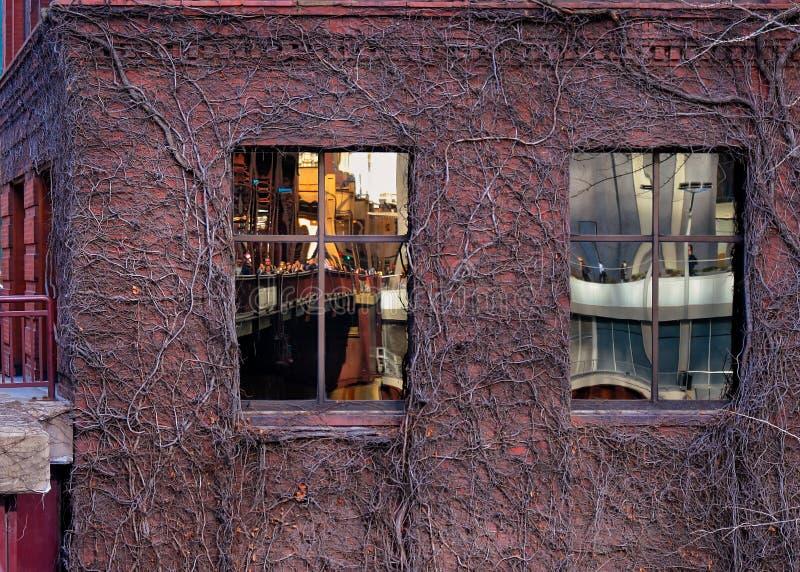 Η άποψη της γέφυρας και της εικονικής παράστασης πόλης οδών λιμνών όπως απεικονίζεται στον κισσό κάλυψε τα παράθυρα οικοδόμησης ` στοκ φωτογραφίες