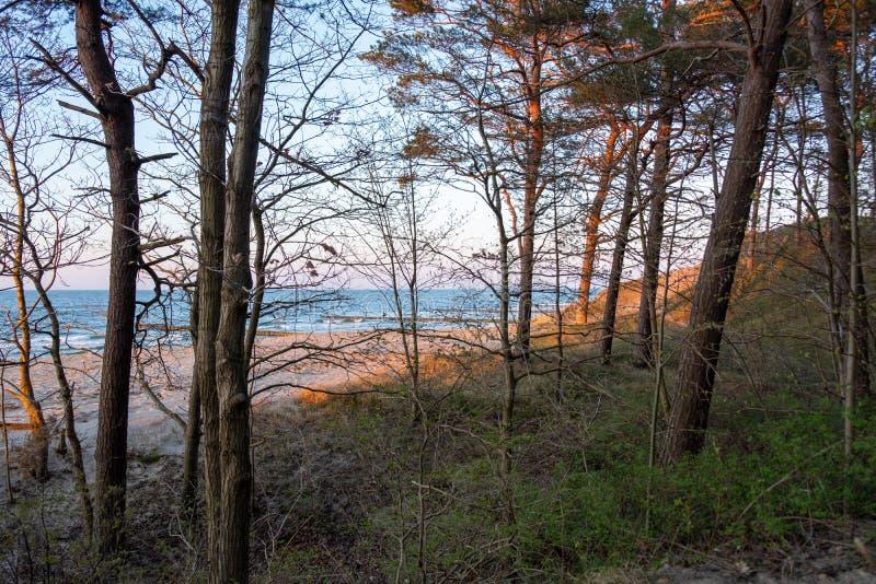 Η άποψη της παραλίας Zempin στοκ εικόνα