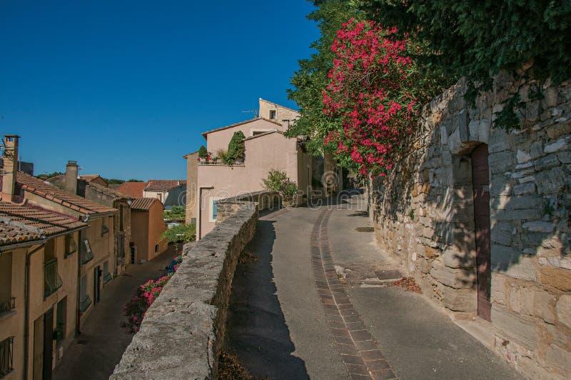 Η άποψη της παραδοσιακής πέτρας στεγάζει και λουλούδια σε μια οδό στην ανατολή, σε châteauneuf-de-Gadagne στοκ εικόνες με δικαίωμα ελεύθερης χρήσης