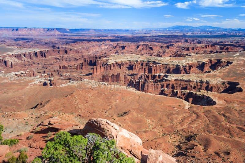 Η άποψη του ποταμού του Κολοράντο και το εθνικό πάρκο Canyonlands από το νεκρό σημείο αλόγων αγνοούν τη Γιούτα ΗΠΑ στοκ φωτογραφίες