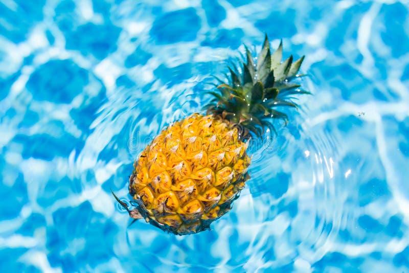 Η έννοια θερινών διακοπών, φρέσκος ανανάς κολυμπά στην πισίνα στο ξενοδοχείο Διακοπές, υγιής κατανάλωση, τροπική έννοια στοκ εικόνα