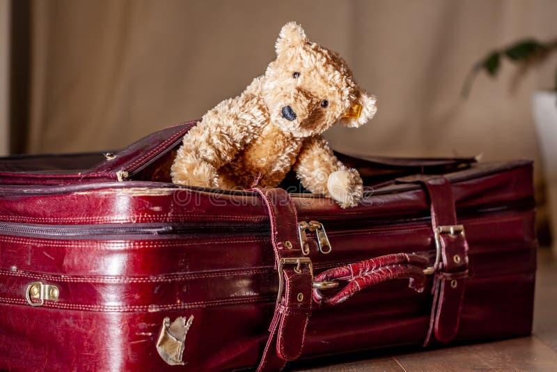 Η έννοια ταξιδιού Teddy αντέχει και κόκκινη εκλεκτής ποιότητας βαλίτσα στοκ φωτογραφίες