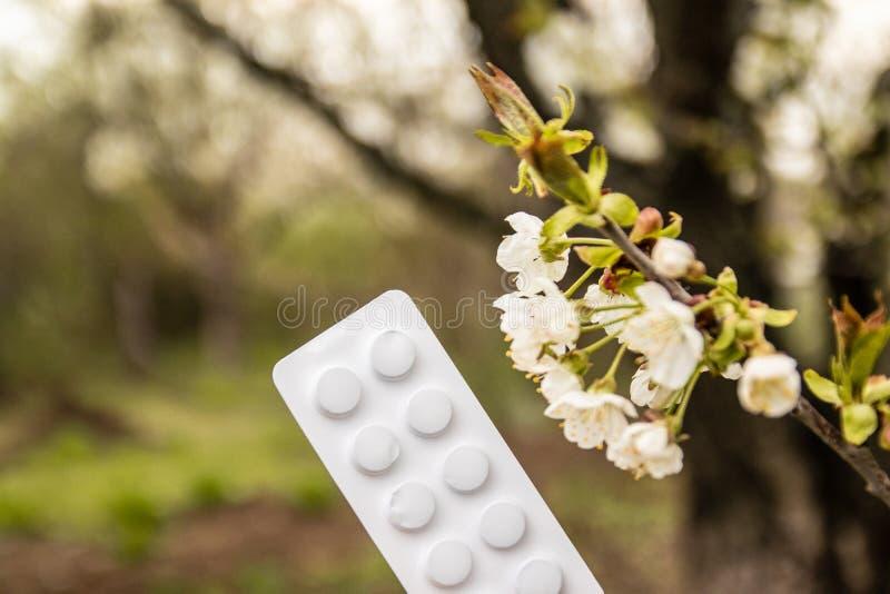 Η έννοια των αντιαλλεργικών φαρμάκων κατά την εαρινή άνθηση στοκ φωτογραφία με δικαίωμα ελεύθερης χρήσης