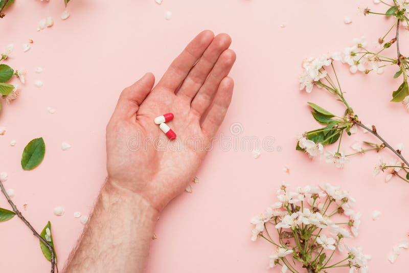 Η έννοια των antiallergic φαρμάκων κατά τη διάρκεια του ανθίσματος άνοιξη στοκ εικόνα με δικαίωμα ελεύθερης χρήσης