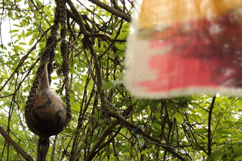 Η ένωση του πράσινου δάσους περικαλυμμάτων υφασμάτων φεύγει και διακλαδίζεται πυροβολισμός φωτογραφιών υποβάθρου στοκ φωτογραφίες με δικαίωμα ελεύθερης χρήσης
