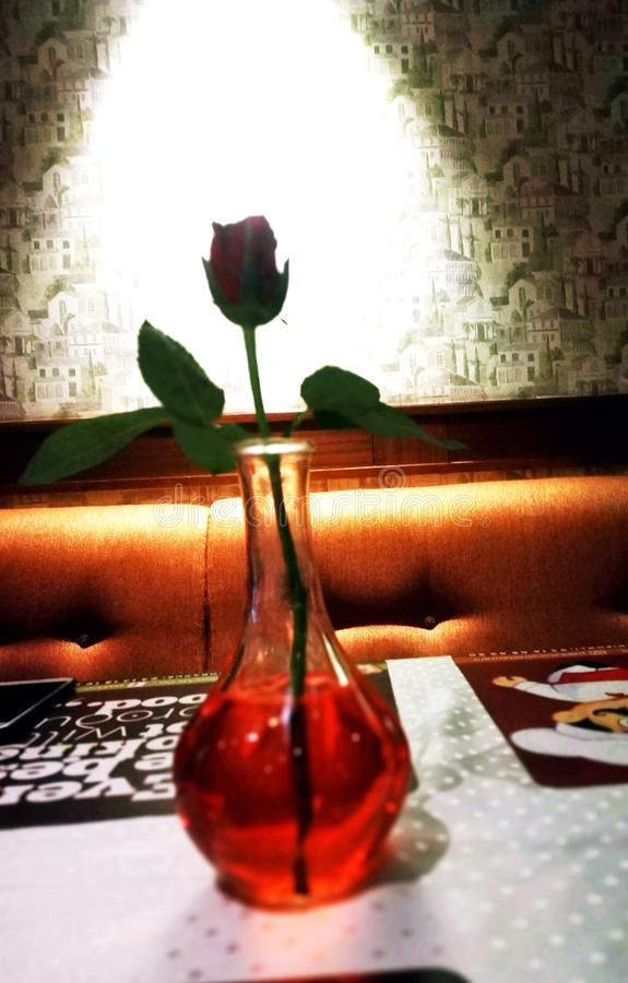 Η αγάπη RedRose που η ένδειξη των καρδιών του Love@Two μπορεί να συνδέσει μέσω  στοκ φωτογραφία