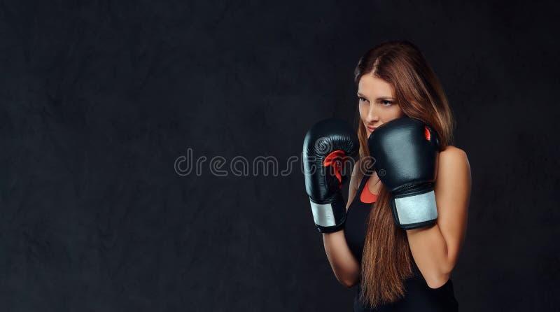 Η αθλητική γυναίκα έντυσε sportswear που φορά τα εγκιβωτίζοντας γάντια που θέτουν σε ένα στούντιο Απομονωμένος σε ένα σκοτεινό κα στοκ εικόνα με δικαίωμα ελεύθερης χρήσης