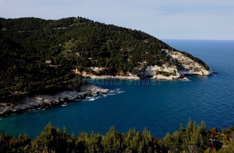 Η ακτή κοντά σε Vieste, Πούλια, Ιταλία στοκ εικόνες με δικαίωμα ελεύθερης χρήσης