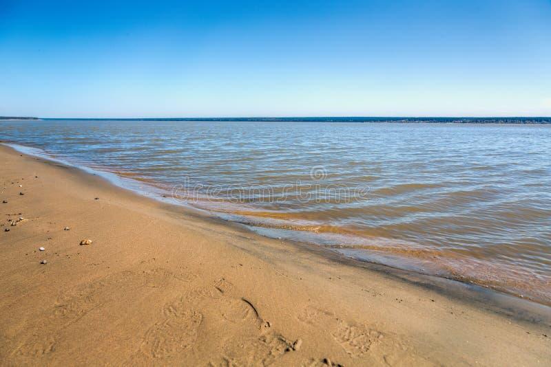 Η ακτή της λίμνης, καλοκαίρι, παραλία στοκ φωτογραφίες