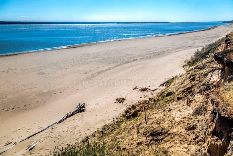 Η ακτή της λίμνης, καλοκαίρι, παραλία στοκ φωτογραφία με δικαίωμα ελεύθερης χρήσης