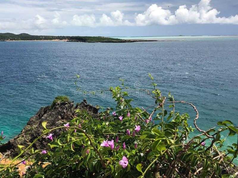 Η ακτή της Μαδαγασκάρης στοκ φωτογραφίες