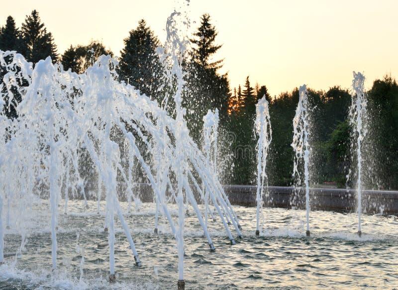 Η ανάβλυση του νερού μιας πηγής στοκ εικόνες με δικαίωμα ελεύθερης χρήσης