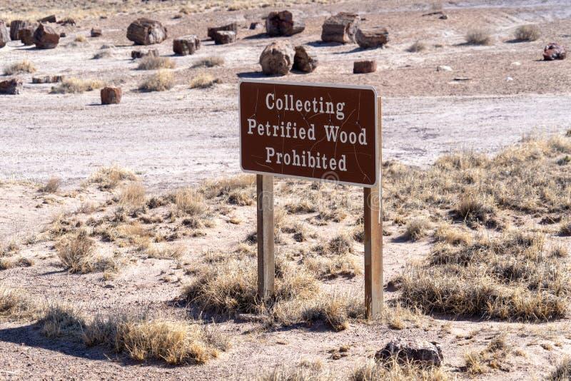 Η ανάγνωση σημαδιών που συλλέγει το πετρώνω ξύλο απαγόρευσε πετρώνω στο η Αριζόνα δασικό εθνικό πάρκο και χρωμάτισε την έρημο στοκ φωτογραφία με δικαίωμα ελεύθερης χρήσης