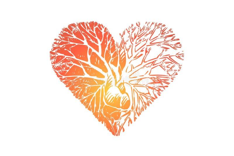 Η ανάπτυξη αγάπης από τη μεταφορά καρδιών, κλάδοι ευγένειας, δέντρο ριζοβόλησε στην καρδιά απεικόνιση αποθεμάτων