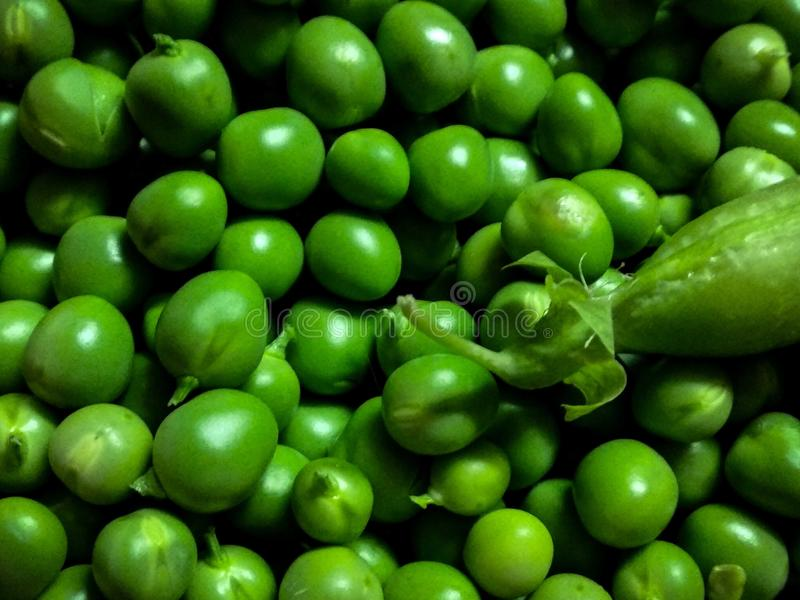 η ανασκόπηση εξοφλείει εφάπαξ λευκό λοβών πράσινων μπιζελιών στοκ εικόνα