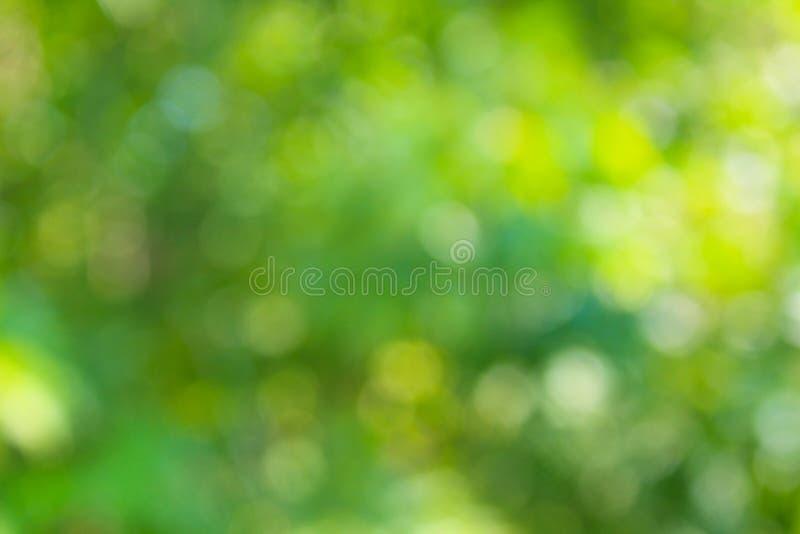 η ανασκόπηση θόλωσε πράσινο στοκ εικόνες με δικαίωμα ελεύθερης χρήσης