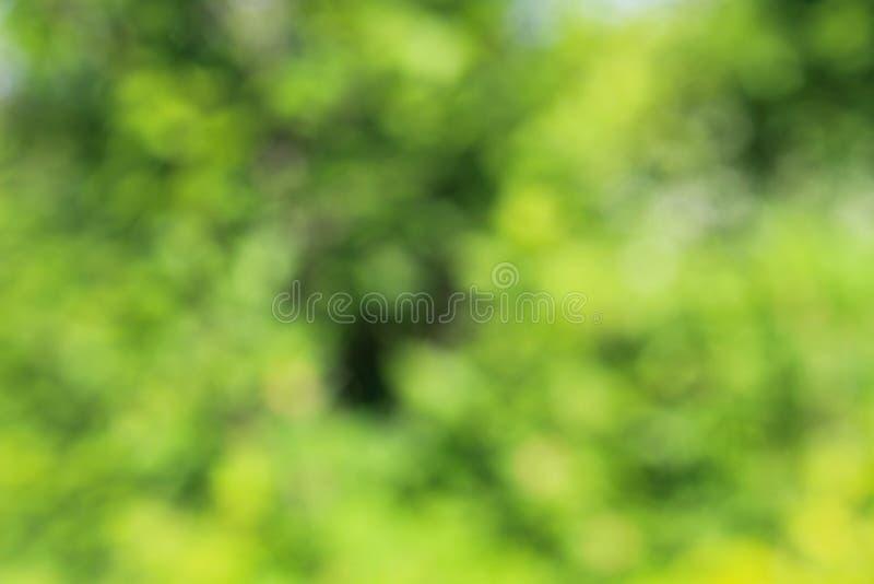 η ανασκόπηση θόλωσε πράσινο στοκ φωτογραφία με δικαίωμα ελεύθερης χρήσης