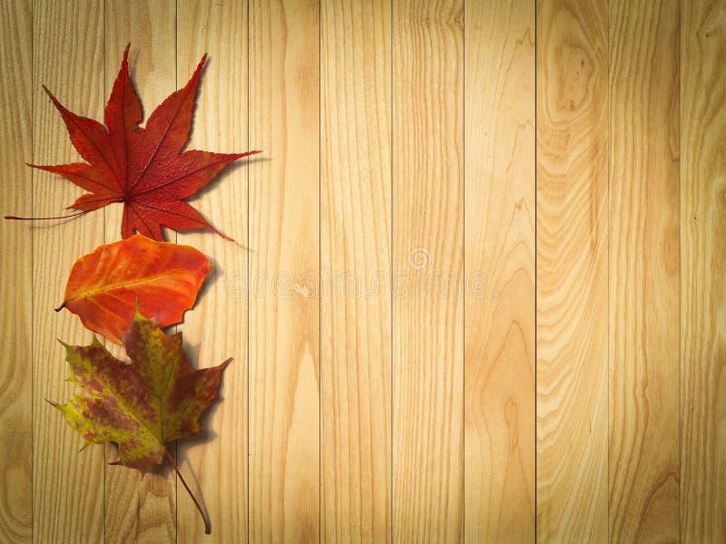 η ανασκόπηση φθινοπώρου α&p στοκ εικόνες με δικαίωμα ελεύθερης χρήσης