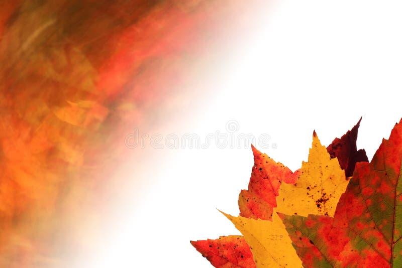 η ανασκόπηση φθινοπώρου ε ελεύθερη απεικόνιση δικαιώματος