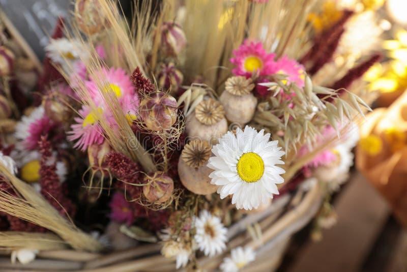 Η ανθοδέσμη των όμορφων ξηρών λουλουδιών φυτεύει - άσπρα και ρόδινα χρυσάνθεμα, παπαρούνες, spikelets σίτου στον ελληνικό φραγμό  στοκ εικόνες