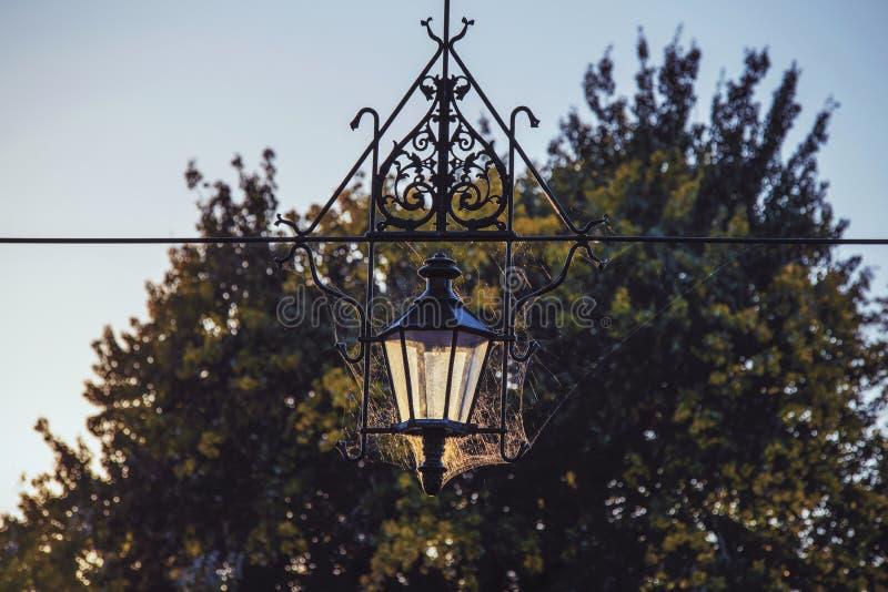 Η αντίκα σφυρηλάτησε το λαμπτήρα οδών μετάλλων με ένα όμορφο σχέδιο των ιστών αράχνης και του μετάλλου στις ακτίνες του ήλιου βρα στοκ φωτογραφία