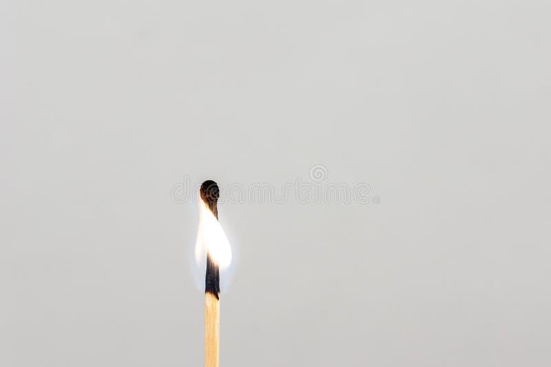 Η αντιστοιχία καίω-πούπουλων Σύμβολο του transience του χρόνου στοκ φωτογραφίες