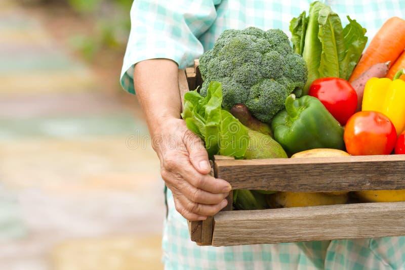 Η ανώτερη γυναίκα φέρνει το φρέσκο προϊόν σπιτικού φυτικού έτοιμου στην παράδοση στοκ φωτογραφία με δικαίωμα ελεύθερης χρήσης