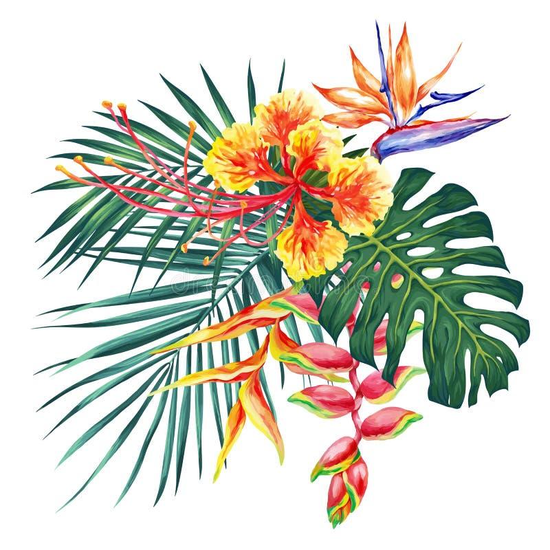 Η απεικόνιση ύφους Watercolor με τα εξωτικά λουλούδια και βγάζει φύλλα Βοτανική φωτεινή συλλογή φύσης που απομονώνεται στο άσπρο  απεικόνιση αποθεμάτων
