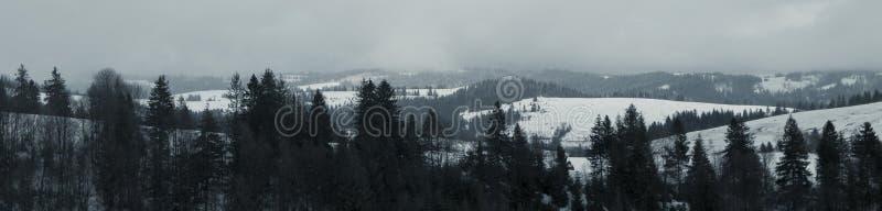 Η αρχή της εποχής σκι Carpathians στοκ εικόνα