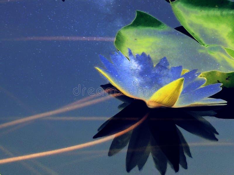 Η αρχαία παγόδα κάτω από τους μπλε κρίνους νερού sunsetHow κοιτάζει στο νερό στοκ εικόνες με δικαίωμα ελεύθερης χρήσης