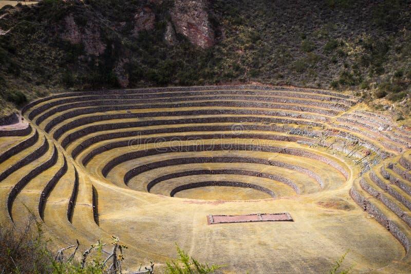 Η αρχαιολογική περιοχή σε Moray, προορισμός ταξιδιού στην περιοχή Cusco και την ιερή κοιλάδα, του Περού Μεγαλοπρεπή ομόκεντρα πεζ στοκ φωτογραφία με δικαίωμα ελεύθερης χρήσης
