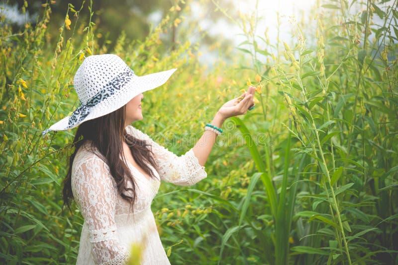 Η ασιατική γυναίκα ομορφιάς στο άσπρο καπέλο φορεμάτων και φτερών που περπατά στο συναπόσπορο ανθίζει το υπόβαθρο τομέων Έννοια χ στοκ εικόνα