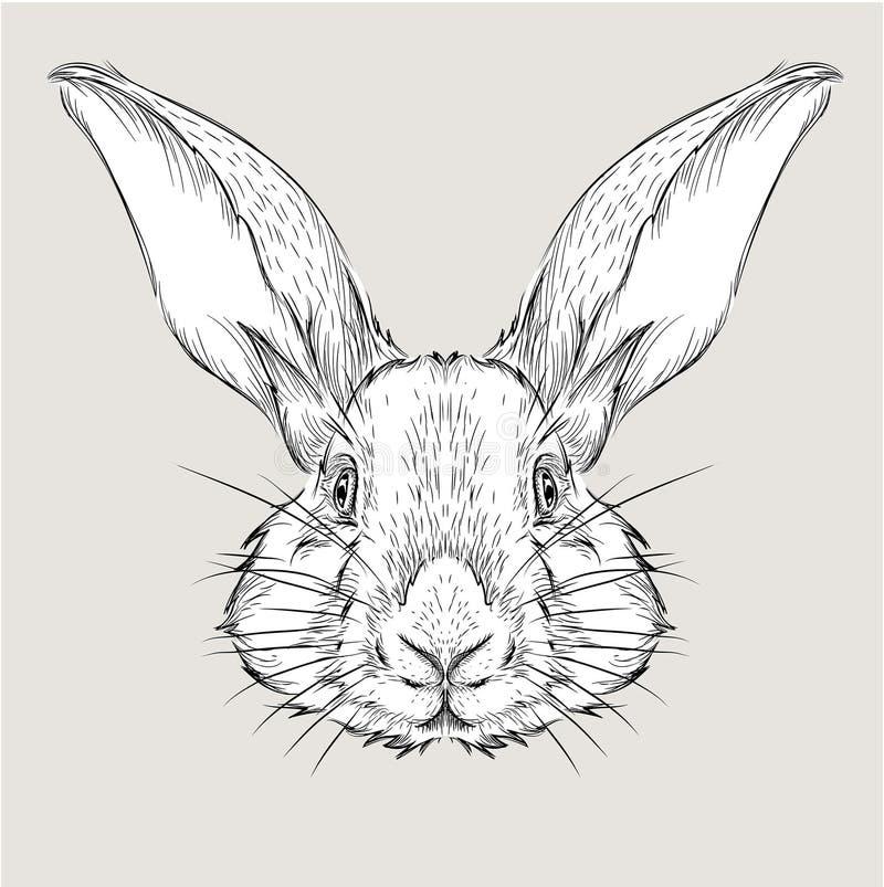 Η αφίσα με το πορτρέτο κουνελιών εικόνας Το χέρι σύρει τη διανυσματική απεικόνιση απεικόνιση αποθεμάτων
