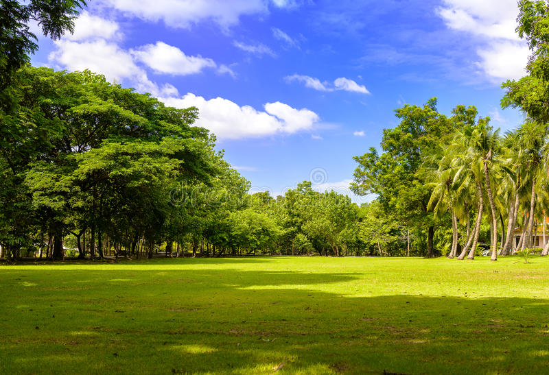 Η αφθονία δέντρων, μπλε ουρανών και χορτοτάπητα σε Sri Nakhon Khuean στοκ φωτογραφία με δικαίωμα ελεύθερης χρήσης