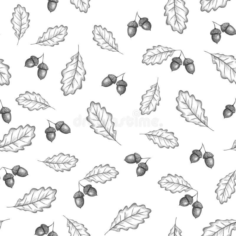 Η βαλανιδιά φθινοπώρου αφήνει το άνευ ραφής σχέδιο διανυσματική απεικόνιση