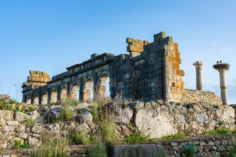Η βασιλική στις ρωμαϊκές καταστροφές Volubilis στο Μαρόκο στοκ φωτογραφία με δικαίωμα ελεύθερης χρήσης
