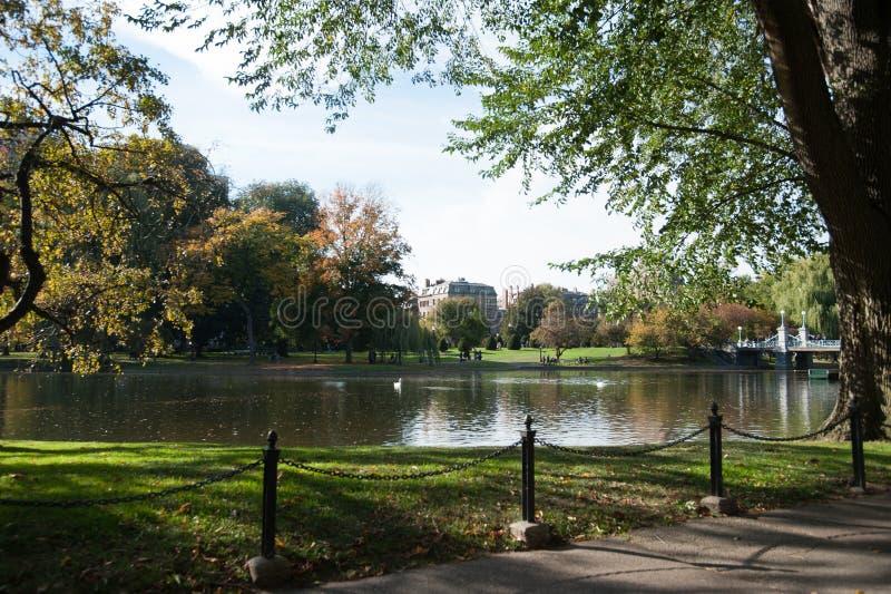 η Βοστώνη καλλιεργεί κο&i στοκ εικόνες