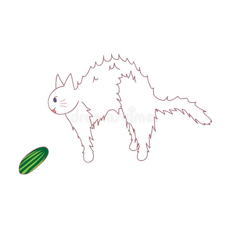 Η γάτα αισθάνεται φοβησμένη από να δει το αγγούρι επίσης corel σύρετε το διάνυσμα απεικόνισης η ανασκόπηση απομόνωσε το λευκό απεικόνιση αποθεμάτων