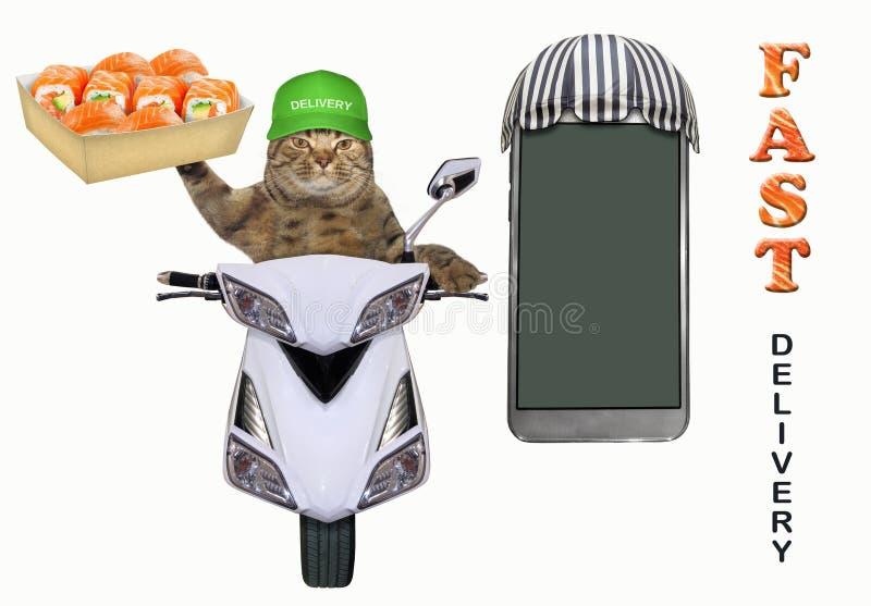 Η γάτα παραδίδει τα σούσια σε ένα μοτοποδήλατο απεικόνιση αποθεμάτων