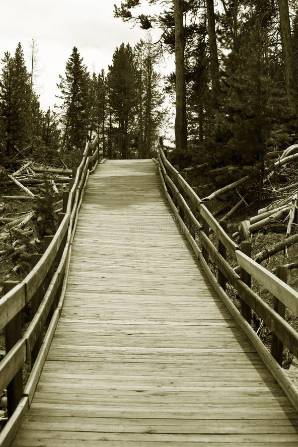 η γέφυρα εγκατάλειψε ξύλ&i στοκ φωτογραφίες με δικαίωμα ελεύθερης χρήσης