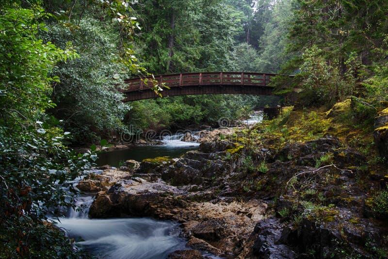Η γέφυρα σε λίγο Qualicum πέφτει επαρχιακό πάρκο στοκ φωτογραφία με δικαίωμα ελεύθερης χρήσης