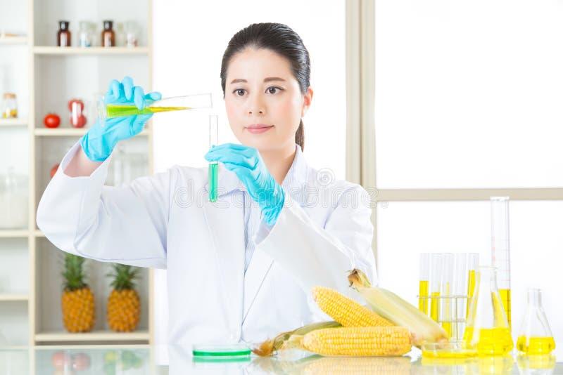 Η γενετική έρευνα τροφίμων τροποποίησης θα βρεί την ένδειξη στοκ εικόνες με δικαίωμα ελεύθερης χρήσης