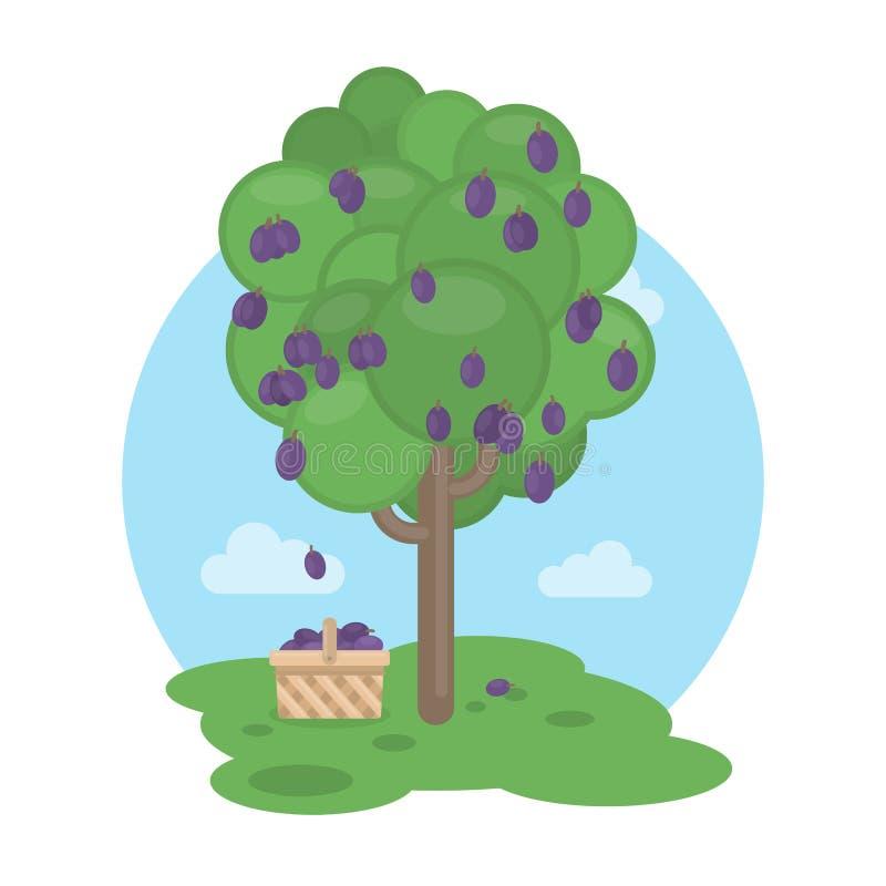η γεωργία διακλαδίζεται νόστιμο δέντρο δαμάσκηνων καρπού έννοιας διανυσματική απεικόνιση