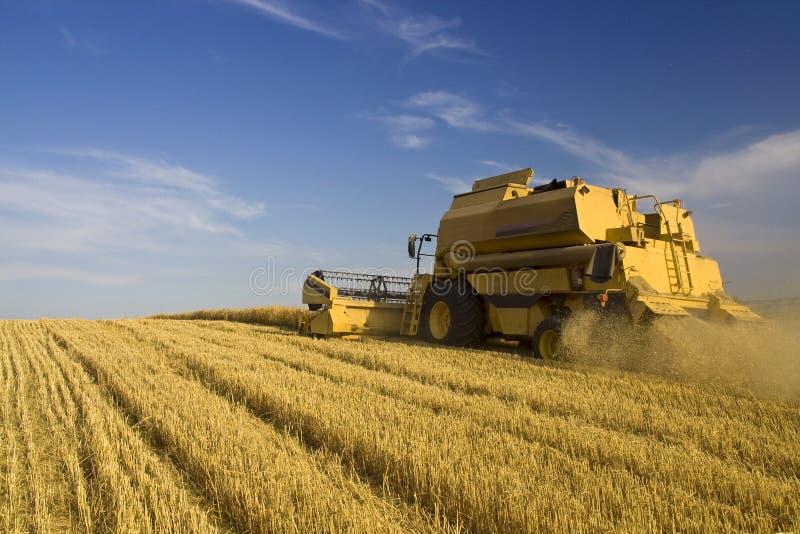 η γεωργία συνδυάζει στοκ εικόνα με δικαίωμα ελεύθερης χρήσης