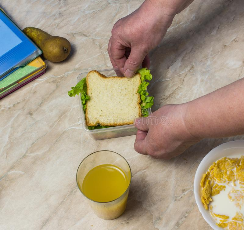 Η γιαγιά συλλέγει το μεσημεριανό γεύμα για το παιδί στο σχολικό σάντουιτς στοκ εικόνες