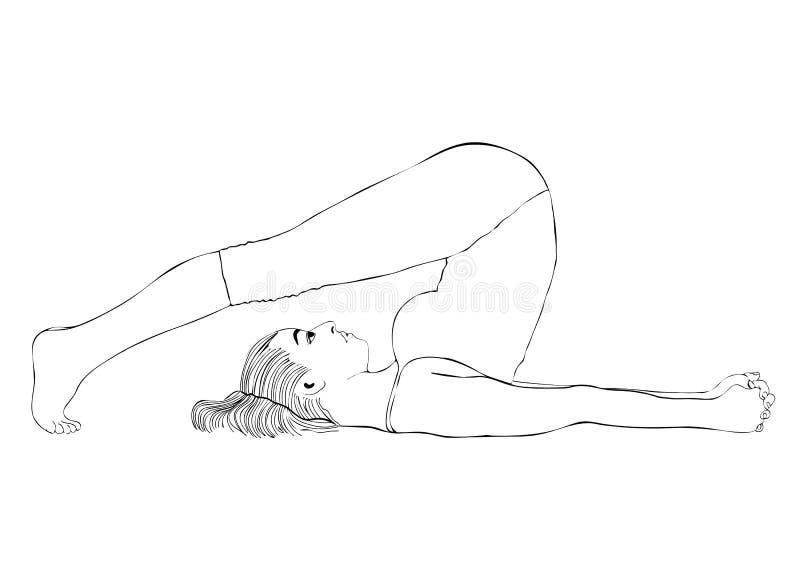 Η γιόγκα, γυναίκα θέτει το halasana, διανυσματικό πορτρέτο σχεδίων χρωματισμού Το κορίτσι κινούμενων σχεδίων συμμετέχει στη γυμνα ελεύθερη απεικόνιση δικαιώματος