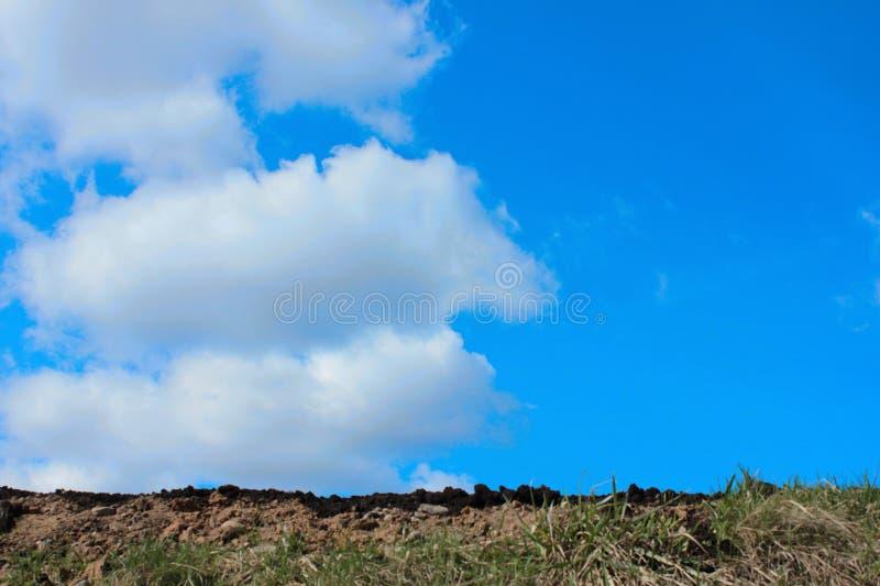 Η γονιμότητα του χώματος σε ένα υπόβαθρο μπλε ουρανού στοκ φωτογραφίες