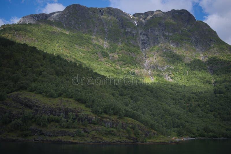 Η γραμμή δέντρων σε ένα βουνό στοκ φωτογραφίες